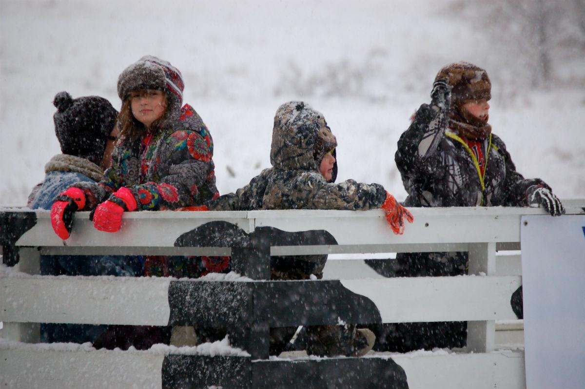 First Snowfall Illuminates Sunset Hill Park at 2015 Winter Lights
