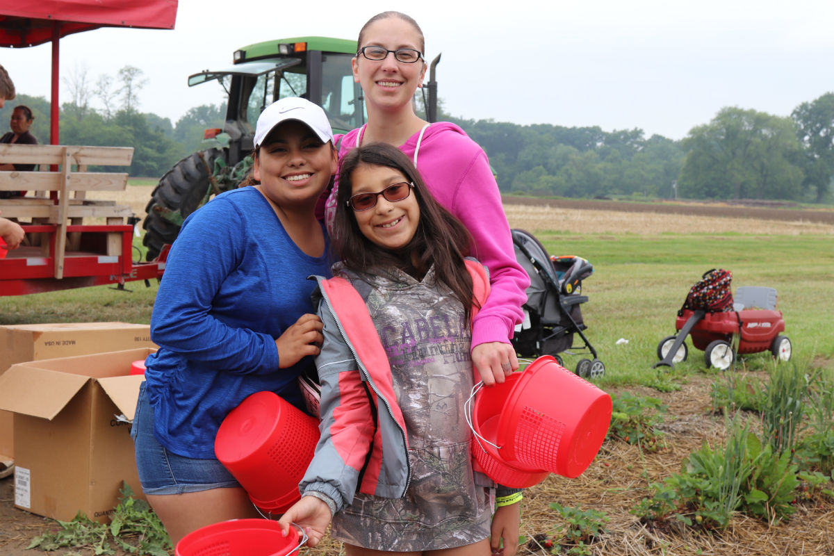 A Little Rain Makes for Better Picking at Johnson's Farm 20th Annual Strawberry Festival