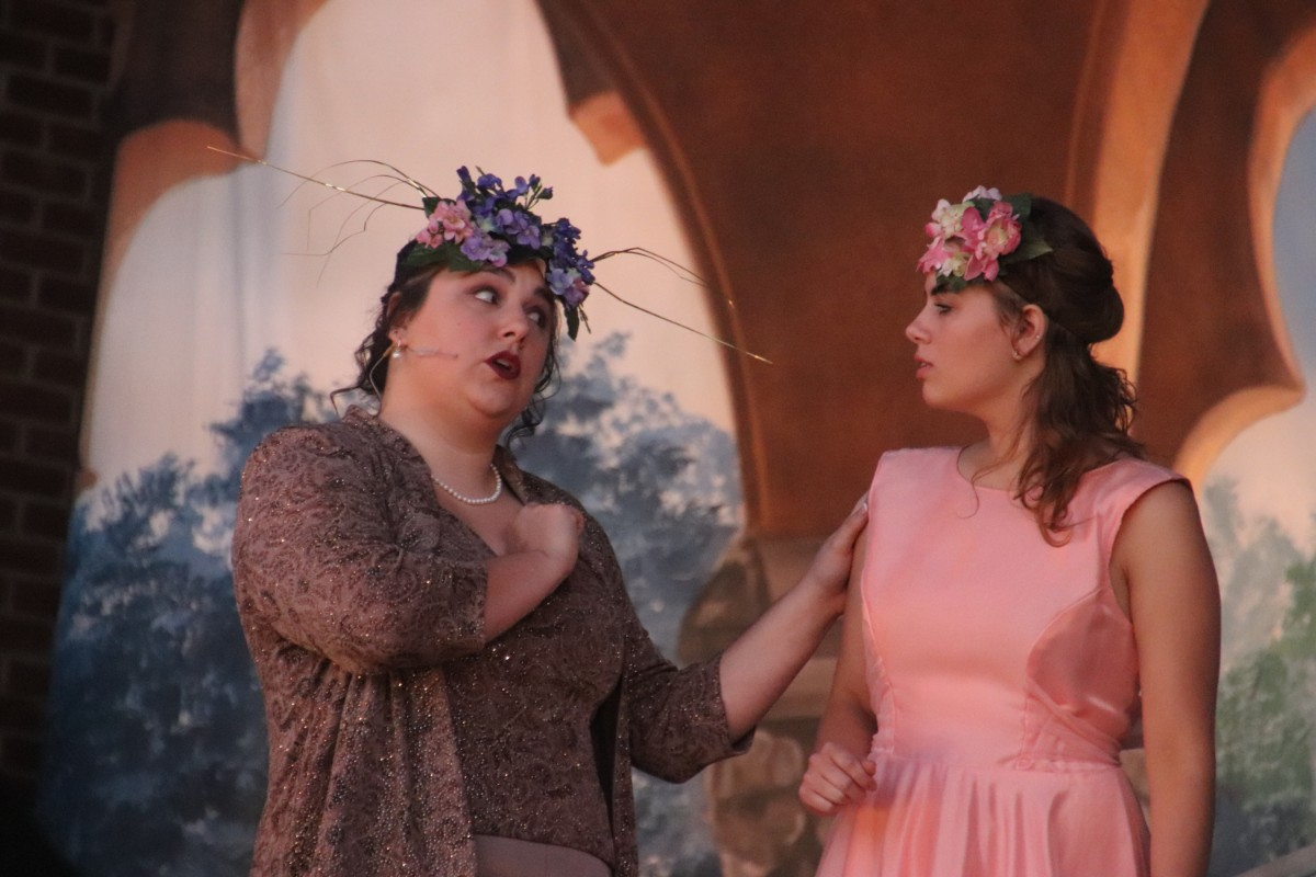 Chicago Street Theatre and Northwest Indiana Excellence in Theatre Foundation Kicks Off 7th Annual Shakespeare in the Park to Bridge Art and Community Together